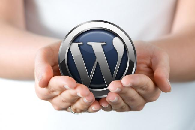 Установлю и настрою Wordpress + необходимые плагины на ваш хостинг 1 - kwork.ru