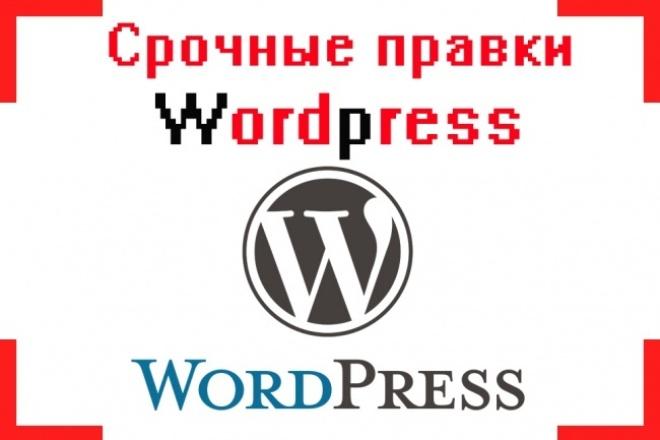 Срочные правки Wordpress 1 - kwork.ru