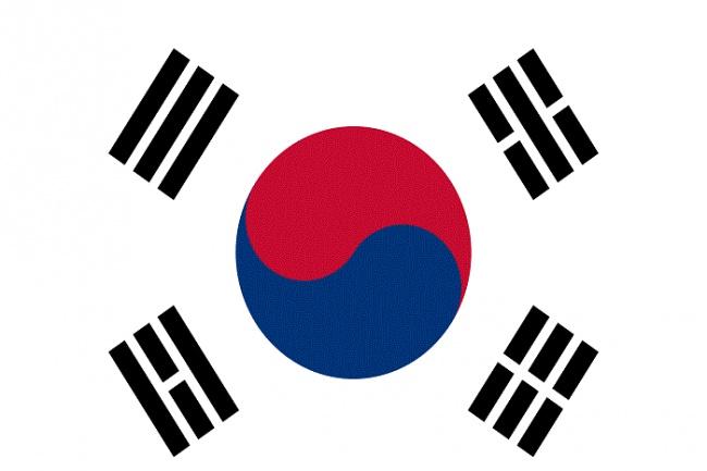 Профессионально переведу с/на корейский 1 - kwork.ru