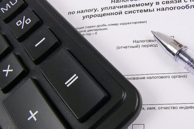 декларация по УСН 1 - kwork.ru
