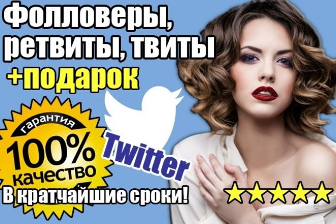 +4000 фолловеров в Twitter (твиттер) + подарок 1 - kwork.ru