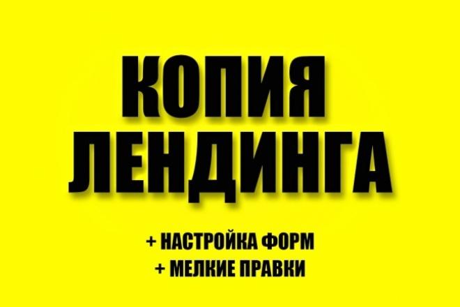 Сделаю копию любого лендинга 1 - kwork.ru
