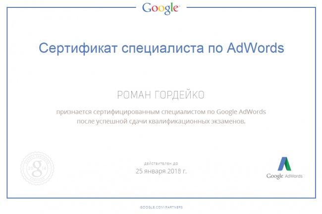 Рекламная кампания Яндекс Директ и Google Adwords, а так же РСЯ и КМС 1 - kwork.ru