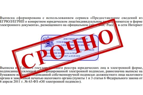 Срочная выписка из егрип в форме электронного документа с ЭЦП 1 - kwork.ru