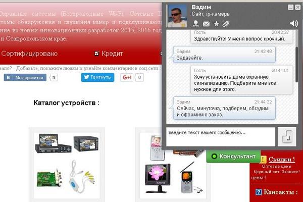 Установлю скрипт Онлайн-Консультанта для сайта, Интернет-Магазина 1 - kwork.ru