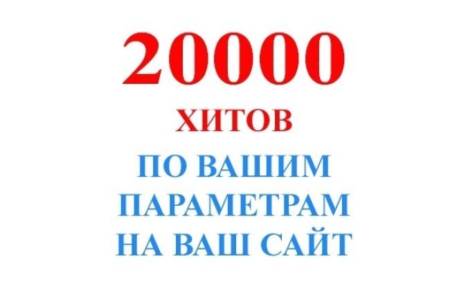 Накрутка 20000 неуникальных посещений (хитов) 1 - kwork.ru