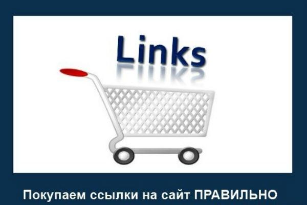 Размещу 900 вечных  ссылок с тИЦ от 10 1 - kwork.ru