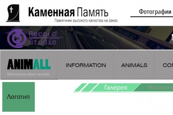 сделаю дизайн шапки для сайта 1 - kwork.ru