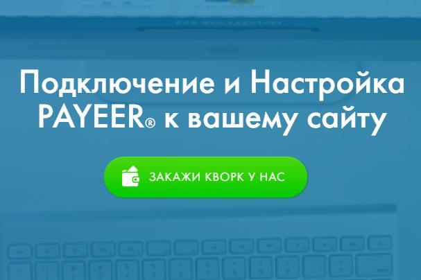 подключу и настрою прием payeer на сайте 1 - kwork.ru