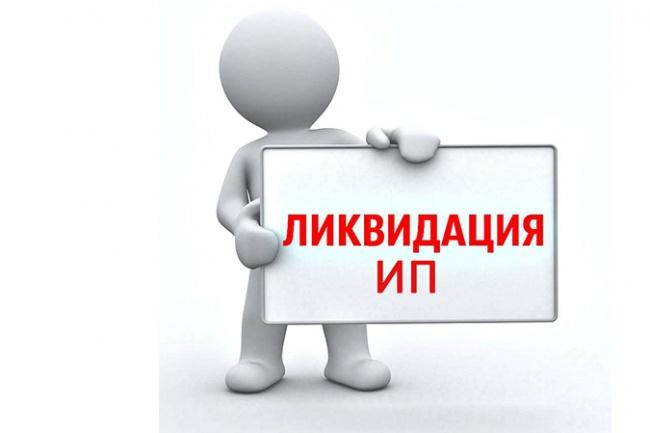 Ликвидация ИП 1 - kwork.ru