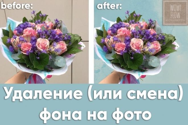 Обтравка фото для интернет-магазина 1 - kwork.ru