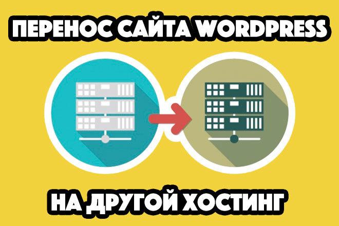 Перенесу ваш Wordpress сайт на другой хостинг или на новый домен 1 - kwork.ru