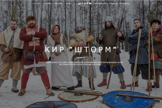 Создание сайта-визитки 1 - kwork.ru