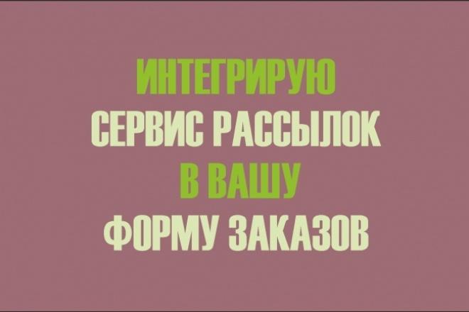 интегрирую сервис рассылок в форму заказов 1 - kwork.ru