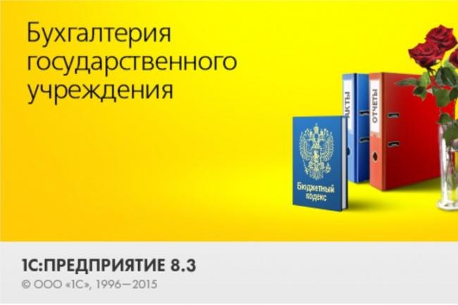 Консультации 1С Бюджет и Зарплата 0,5 часа 1 - kwork.ru