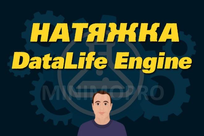 Натяну HTML верстку на DLE 1 - kwork.ru