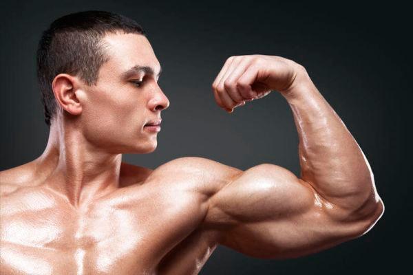 Распишу программу тренировок, основанную на специализации рукЗдоровье и фитнес<br>Распишу программу тренировок в тренажерном зале , основанную на специализации рук, с помощью которой вы, дисциплинированно соблюдая все упражнения увеличите объем ваших рук на 3 см или же больше за 6 недель<br>