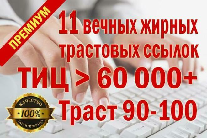 10 вечных жирных высокотрастовых ссылок размещу вручную + бонус 1 - kwork.ru