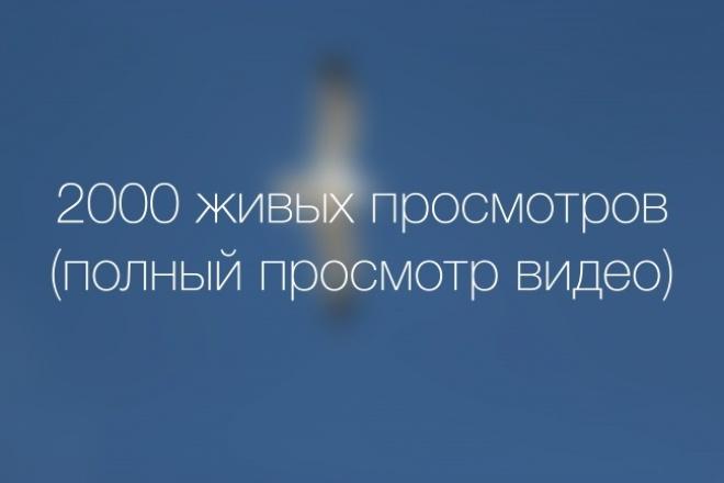 2000 живых просмотров на ваше видео 1 - kwork.ru