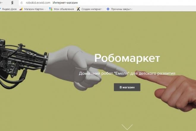 Продам интернет-магазин первого детского робота 1 - kwork.ru
