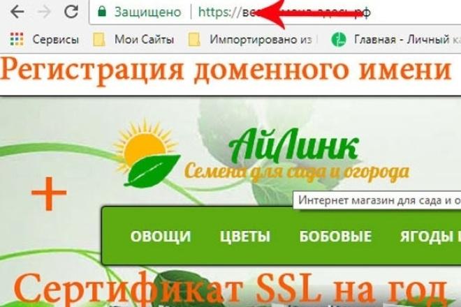 Домен в зоне . ru с сертификатом SSL 1 - kwork.ru