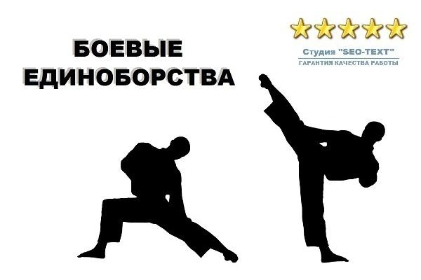 Тексты по боевым единоборствам 1 - kwork.ru