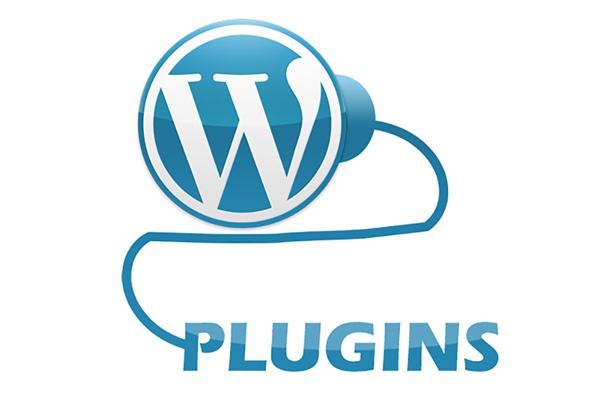 установлю и настрою плагин Wordpress 1 - kwork.ru