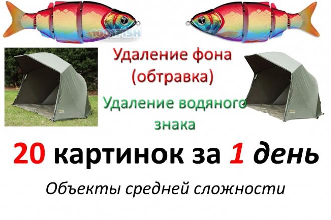 Удаление фона (обтравка) средней сложности 1 - kwork.ru