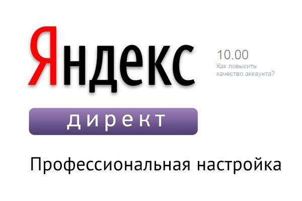 Настрою и проведу кампанию в Я.Директ 1 - kwork.ru