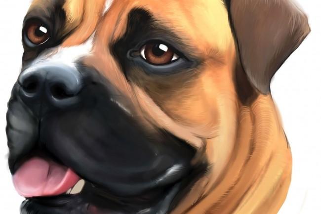 Иллюстрация животных 1 - kwork.ru