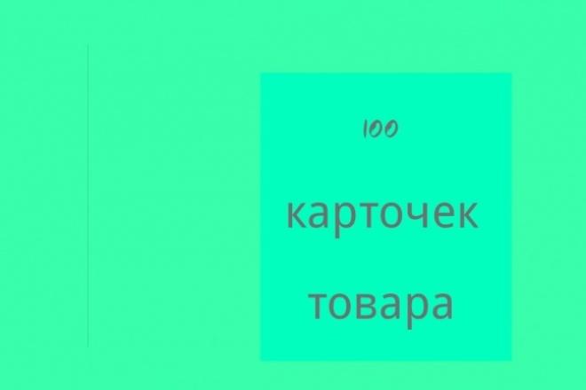 Заполню 100 карточек товара 1 - kwork.ru
