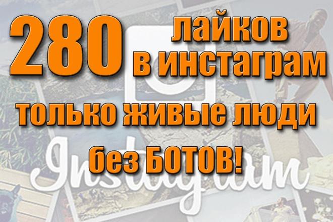 За сутки 280 лайков в Инстаграм. Живые люди. Без ботов! 100% 1 - kwork.ru