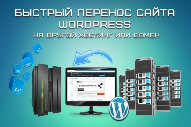 Установка сайта Вордпресс на хостинг 1 - kwork.ru
