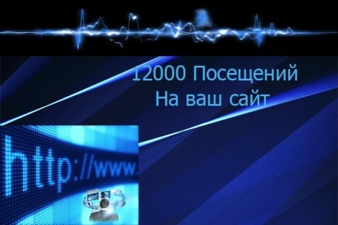 12000 просмотров сайта 1 - kwork.ru