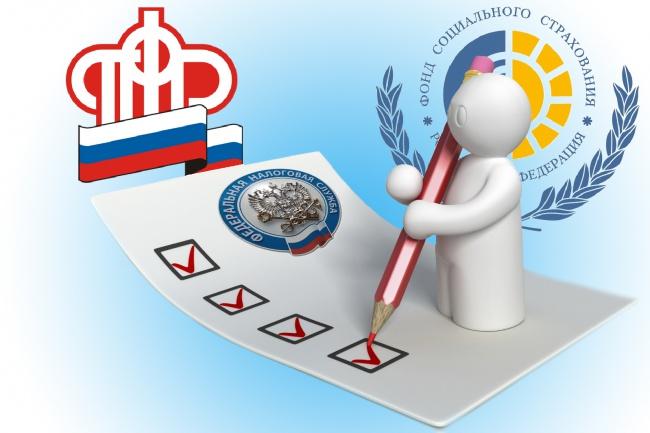 заполню декларации в ФСС , ПФР или 6-ндфл в ифнс 1 - kwork.ru