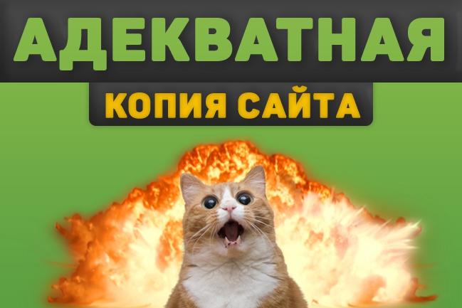 Скопирую и адаптирую лендинг под ваши нужды 1 - kwork.ru