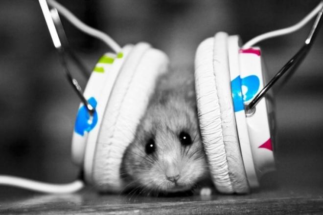 Переконвертирую аудиоРедактирование аудио<br>Быстро переконвертирую аудио файлы в любой формат по Вашему желанию. (mp3, wav, wma, flac и т.д....)<br>