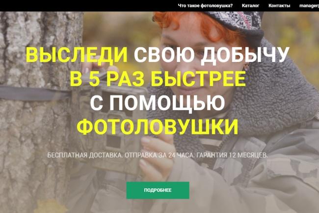 Сделаю одноэкранную посадочную страницу с продающим заголовком 1 - kwork.ru