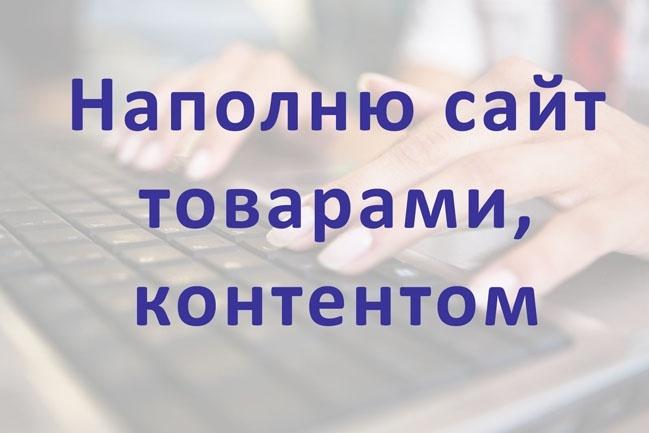 Наполню сайт товарами, контентом 1 - kwork.ru