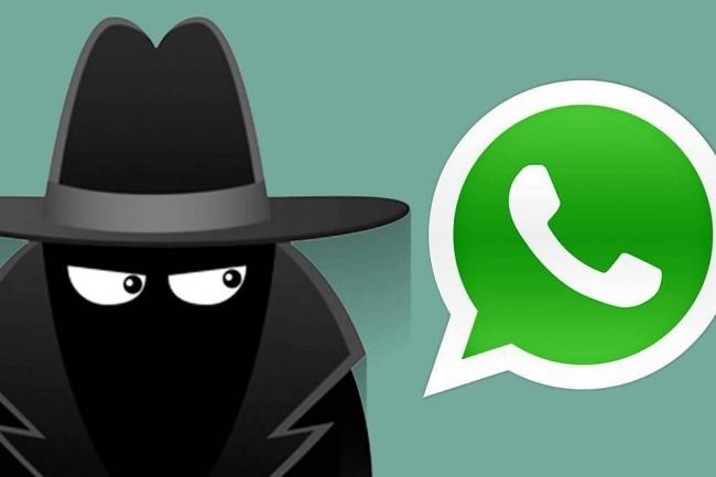 Таргетированная рассылка по whatsapp 1 - kwork.ru