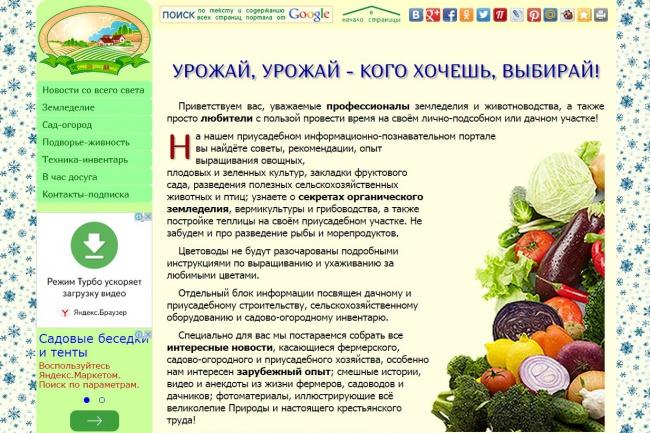 напишу статью и размещу на своём сайте 1 - kwork.ru