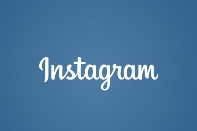 1400 живых подписок, лайков (без критериев) в  Instagram 1 - kwork.ru