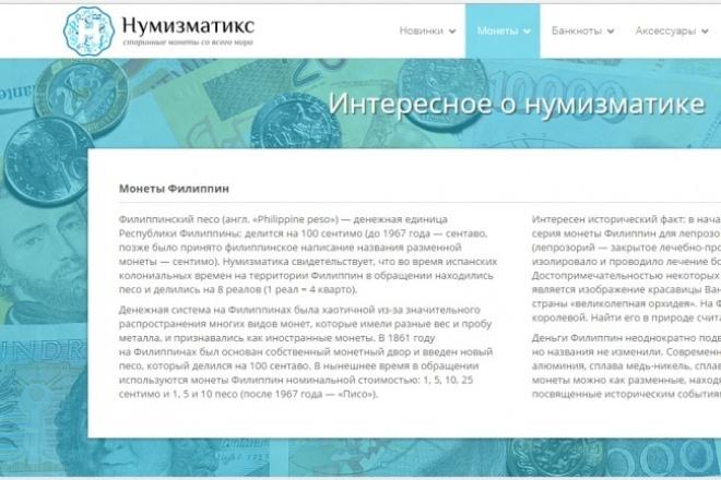 пишу уникальную статью для сайта, интернет - магазина 1 - kwork.ru