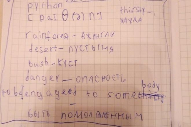Наберу текст в Word на русском/английском языке 1 - kwork.ru