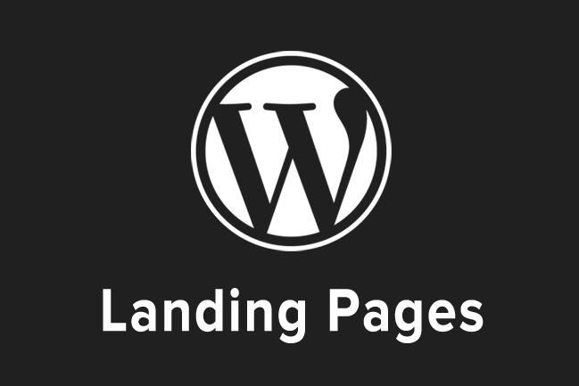 Создание копии одностраничных сайтов - Landing Page 1 - kwork.ru