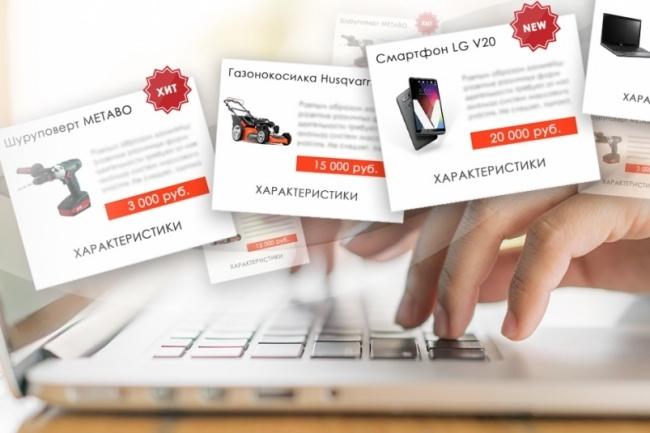 Наполнение интернет-магазина товарами 70 штук 1 - kwork.ru