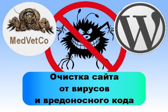 Очистка сайта WordPress от вирусов и вредоносного кода 1 - kwork.ru