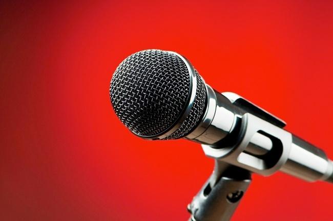 Озвучиваю голосовые приветствия, IVR, презентации, детские книги 1 - kwork.ru