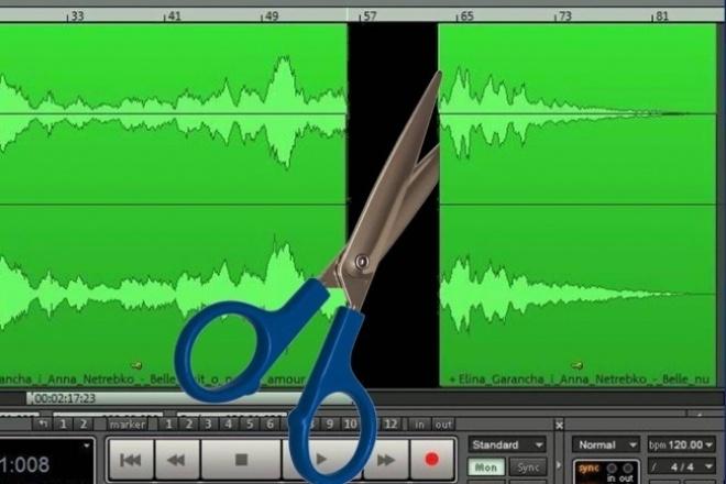 Обрежу, склею, удлиню, изменю музыкуРедактирование аудио<br>В один кворк можно включить обрезку ( любую метаморфозу ) 3 файлов! Обрезка трека на любом участке звучания (по Вашему желанию); Возможно придание эстетичности плавным появлением и угасанием звучания; Возможна склейка с любым другим треком (место встречи треков в звуковом поле - на Ваше усмотрение).<br>