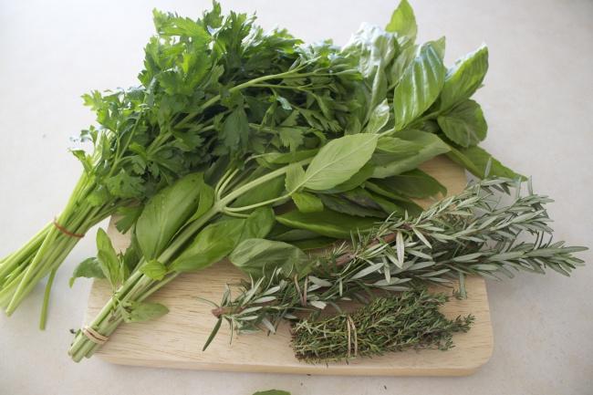 соберу контент или статью для сайта про домашние растения 1 - kwork.ru